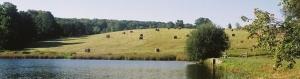 baled-hay-jordan-pond