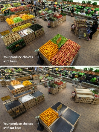 Big-wholefoods-bees-releasephoto