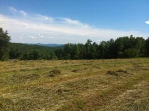 view of range