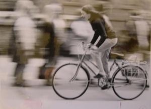 SMith bikes2