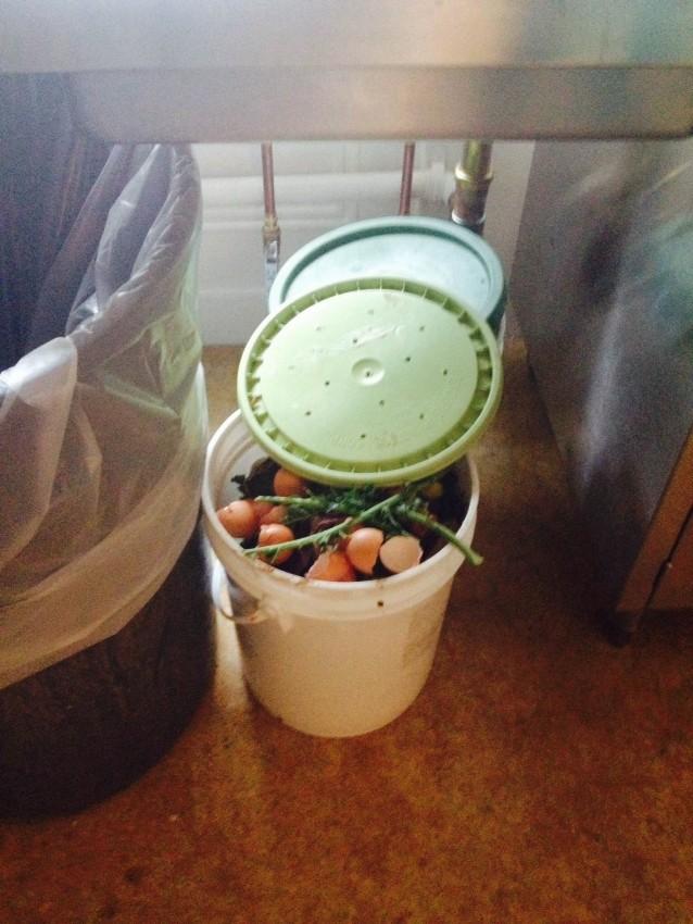 compost eliana.jpg